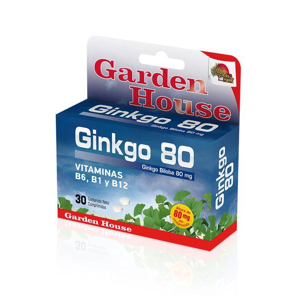 suplemento-dietario-ginkgo-biloba-80-mg-en-comprimidos-x-30-un