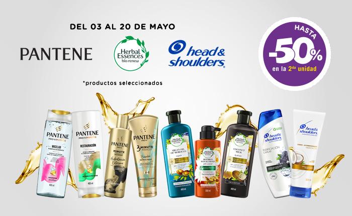 P&G Capilar multibrand NewHome